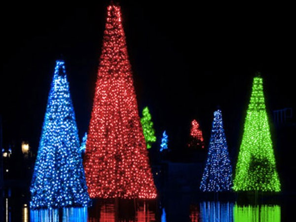 SeaWorld-Orlando-Christmas-Celebration-Sea-of-Trees-Colors-650x450