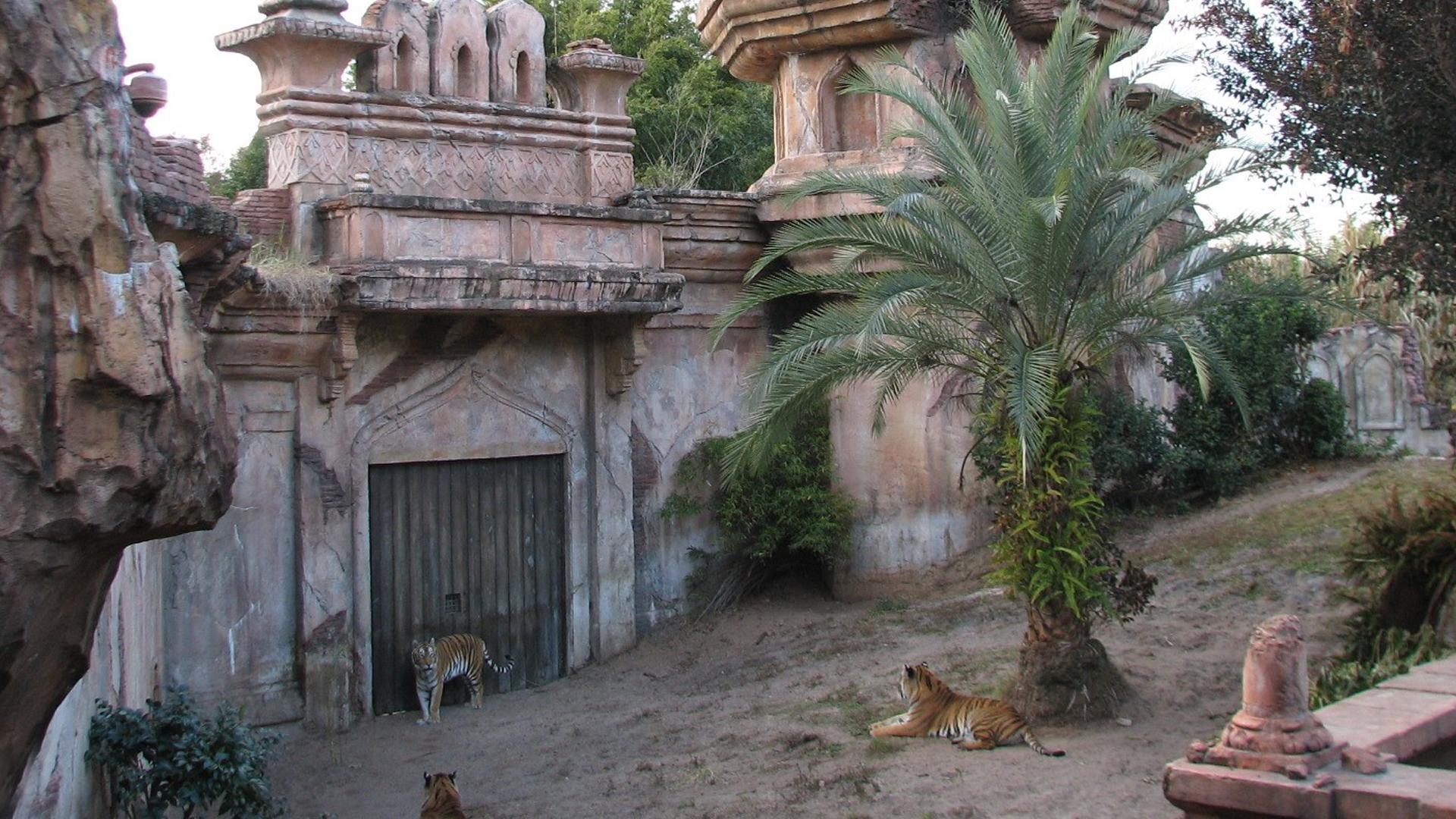 Maharajah Jungle Trek Orlando Tickets Hotels Packages