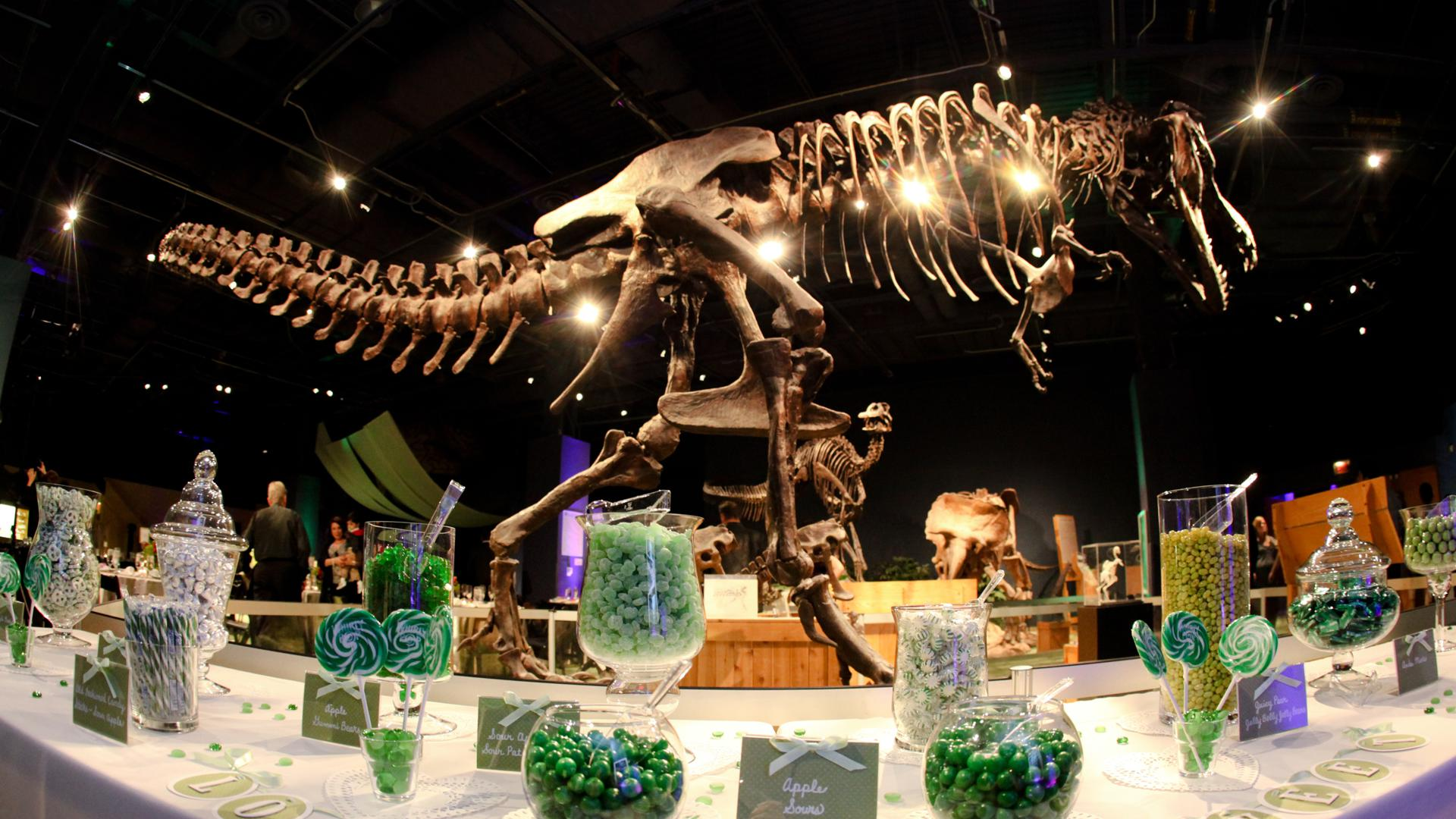 Orlando Science Center Orlando Tickets Hotels Packages