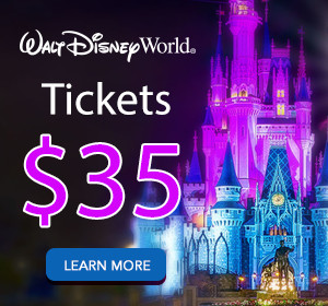 disney-world-1-ticket-35-300px