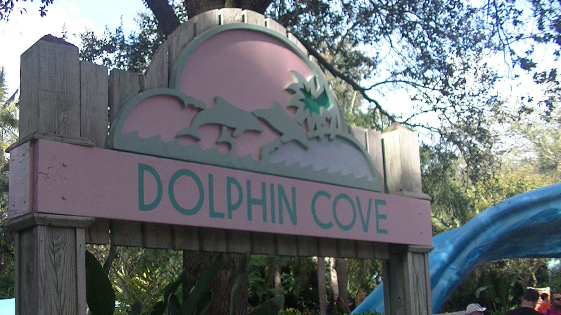 Dolphin Cove Orlando Tickets Hotels Packages