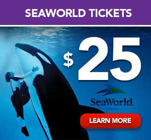 seaworld-1-ticket-25-300x280px