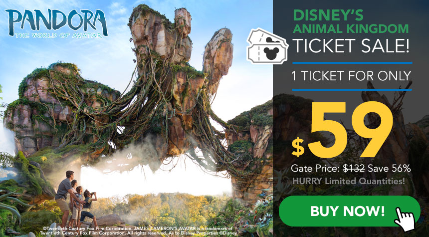 Discount Animal Kingdom Tickets for Sale at 355movie.ml! 355movie.ml is happy to provide military discounts and student discounts for all events.. If you're looking for a safe and reliable online destination to buy discount Animal Kingdom tickets, you're definitely in the right place!
