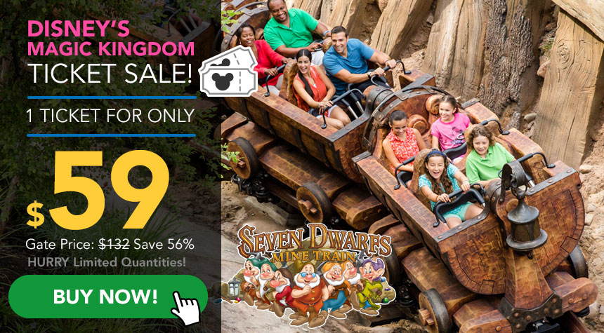 Tickets2You is an authorized seller of discount SeaWorld Orlando tickets. Celebrate sea life and marine animals at SeaWorld with discount theme park tickets!