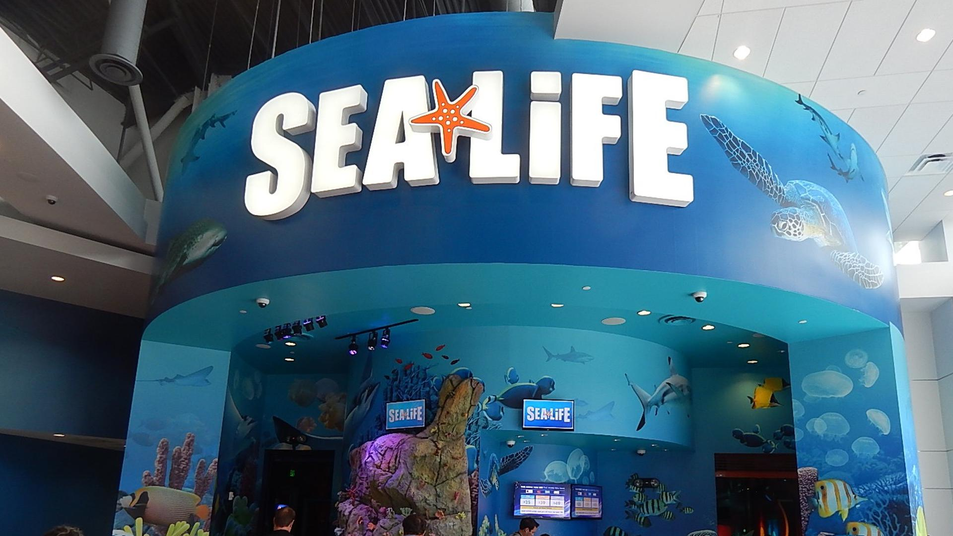 Sea Life Aquarium Orlando Orlando Tickets Hotels Packages