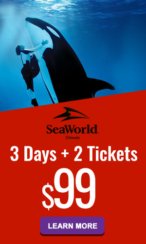 seaworld-3-2-99-300x500px