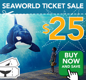 Seaworld Ticket Sale