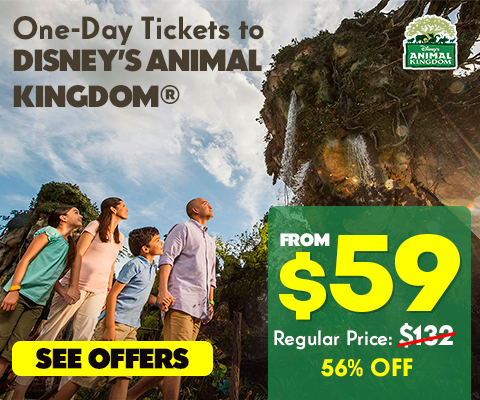 animal_kingdom_ingles_1