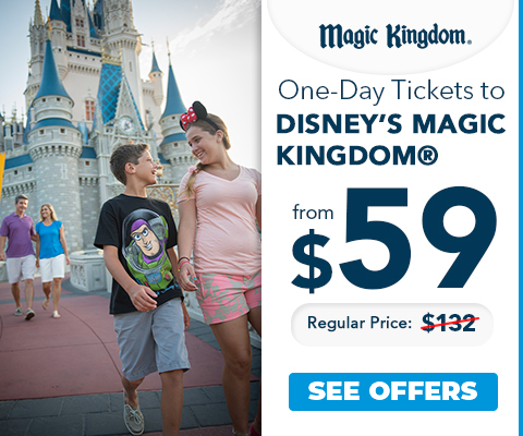 disney_s_magic_kingdom_ingles_2