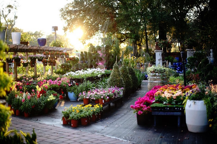 Palmers Garden Goods Orlando
