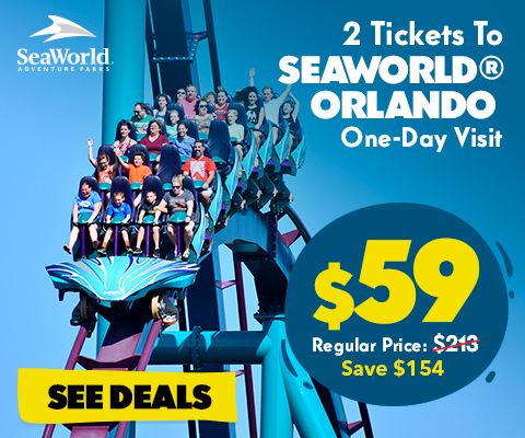This pass also includes reserved seating at select shows in Florida parks, and ride-again privileges on select rides at SeaWorld and Busch Gardens.