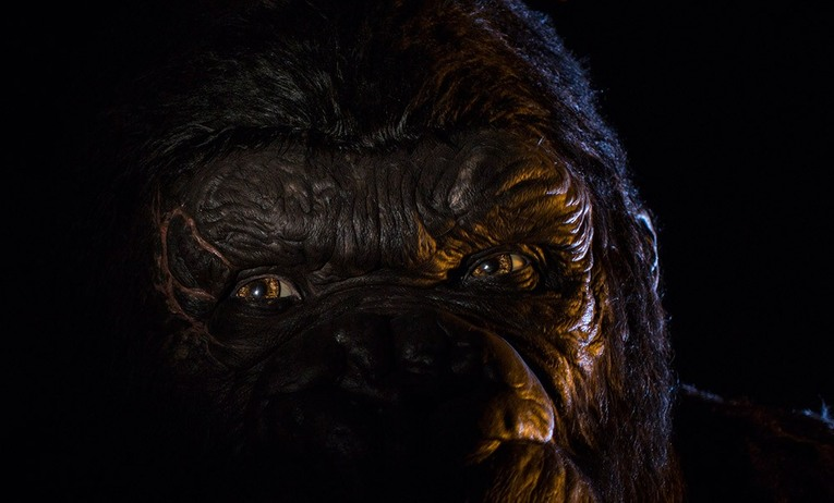 Universal Orlando Skull Island Reign of Kong closeup image