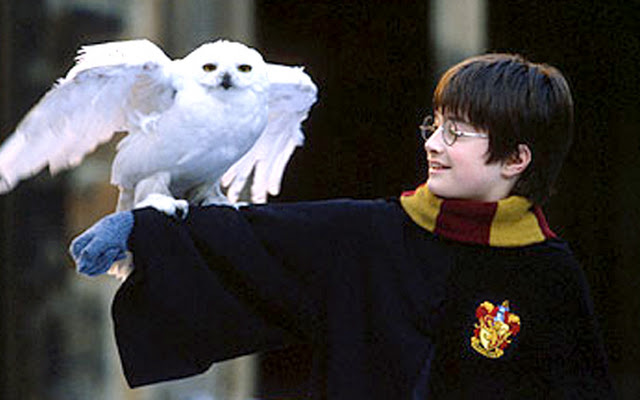 Harry Potter & the Sorcerer's Stone Harry with Owl