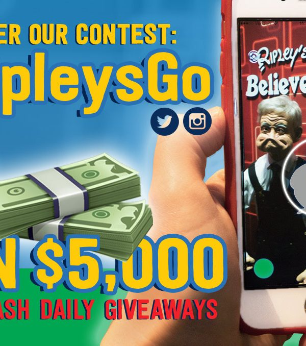 Win money playing free games online - f6dc2