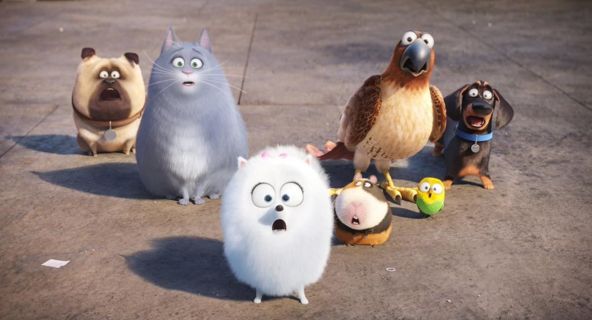 Secret Life of Pets all in shock