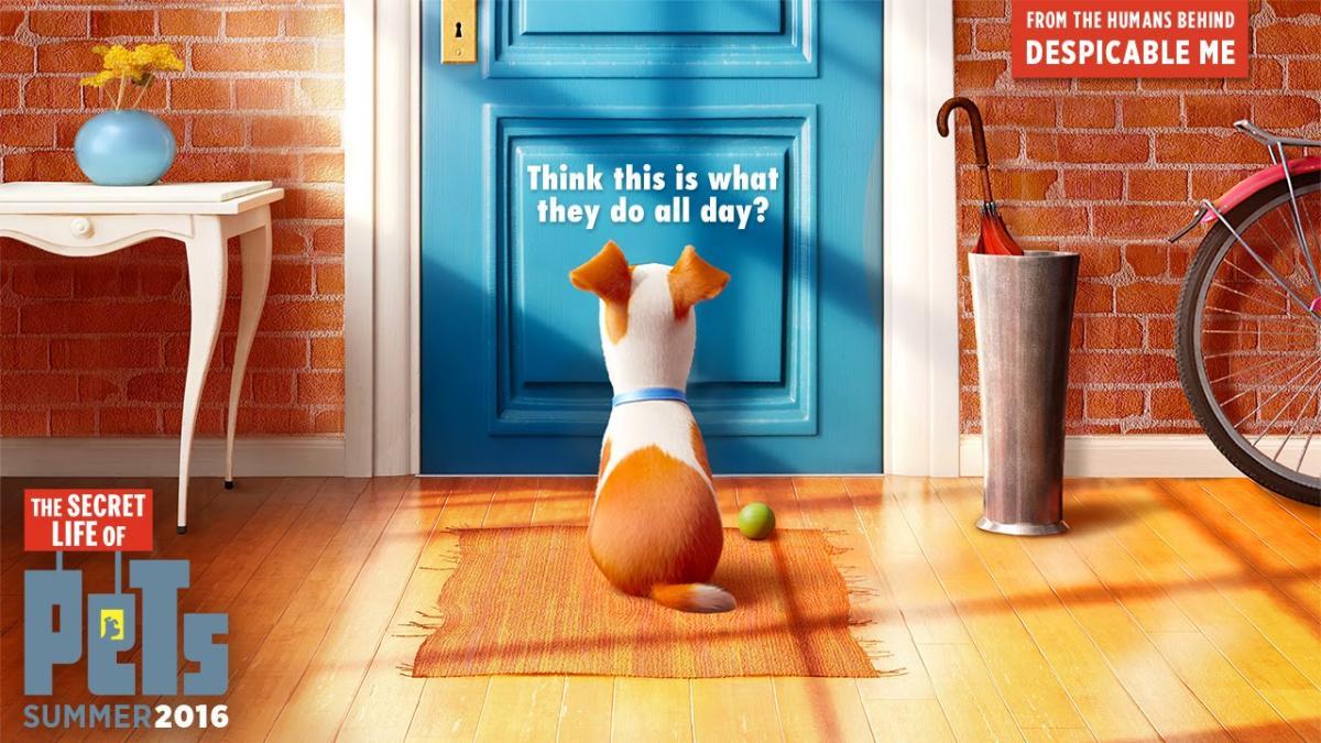 Secret Life of Pets dog waiting by door