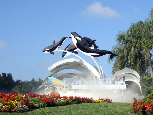 First Responders Get Free Visit To Seaworld Orlando