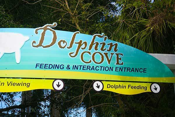 Dolphin_Nursery_7zd2SL.jpg