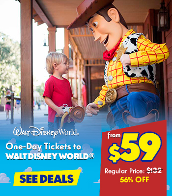 $59 – 1 Disney World Ticket_2