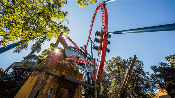 Top 5 roller coasters of busch gardens tampa for Best day go busch gardens tampa