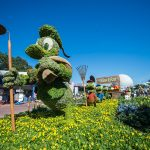 Discount Epcot Tickets