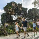 Discount Animal Kingdom Tickets