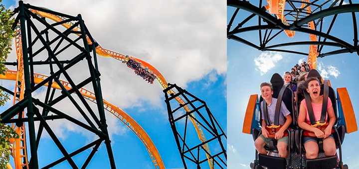 Tigris the new roller coaster coming to busch gardens - Busch gardens rides height requirements ...