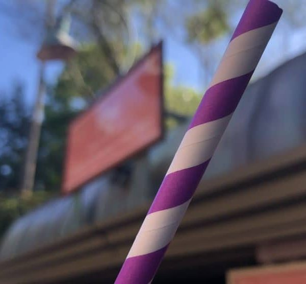 offreys-paper-straws-disneys-hollywood-studios